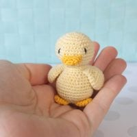 Tiny Duck by Tamara Ramsey
