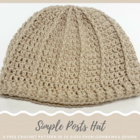Simple Posts Hat – Free Crochet Pattern in 10 Sizes