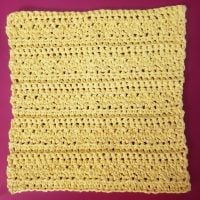 Wednesday link Party 352 Features Lemons on the Line Washcloth