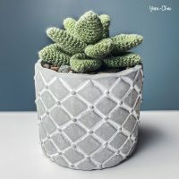 Succulent Crochet Pattern Rebecca Langford Featured at Free Pattern Friday