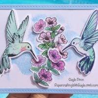 Sweet Hummingbird Cards