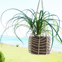 Easy Plant Hanger Pattern - Free Pattern Friday