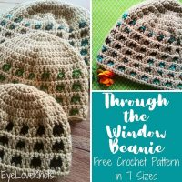 Through the Window Beanie - Featured Link Party 367