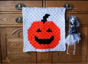 Pumpkin Panel ODC Free C2C Panel Pattern