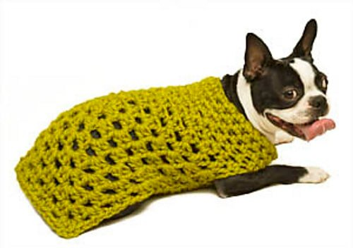 Granny Square Dog Sweater - Free Pattern Friday