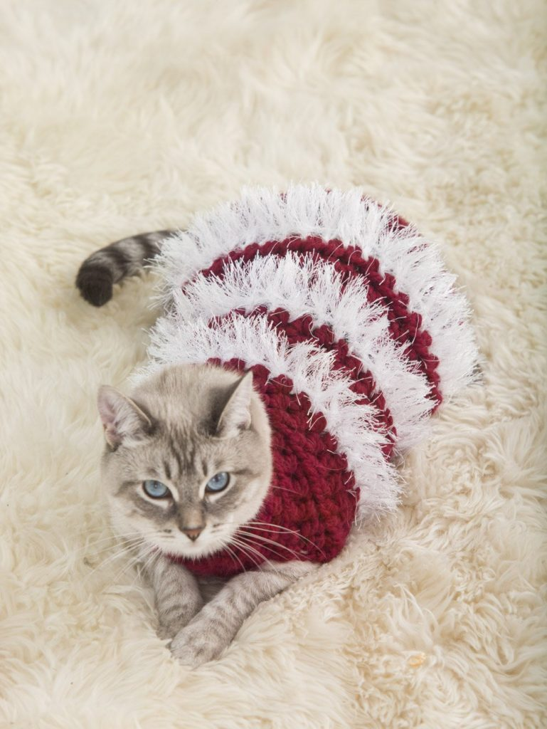 Holiday Pet Sweater - Free Pattern Friday