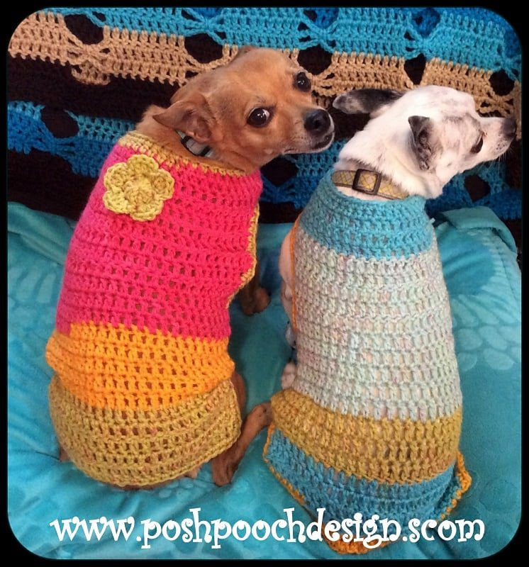 Maggie Dog Sweater - Free Pattern Friday