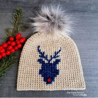 Reindeer Beanie Free Pattern Friday