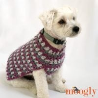 Well_Dressed_Dog_Coat - Free Pattern Friday