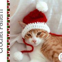 Crochet Santa Cat hat Pattern
