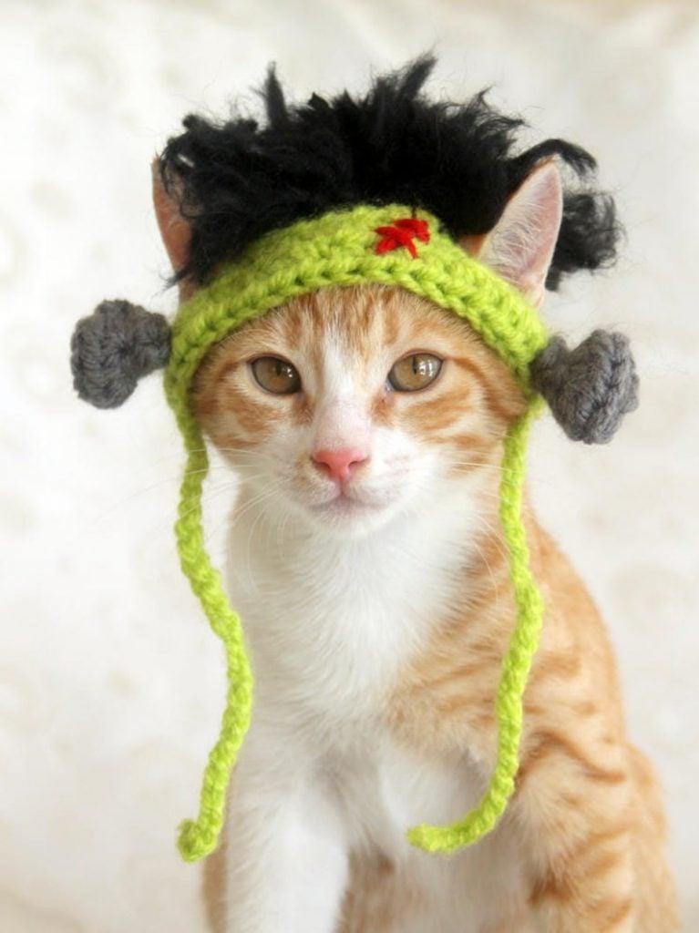 Frankenstein Cat Hat Finished Item - Pawsome Crochet Shop