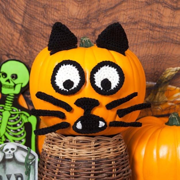Spooky Cat Pumpkin - Free Pattern Friday