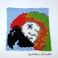 Macaw Parrot C2C Square - Free Pattern Friday