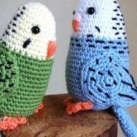 Parakeet - Free Pattern Friday