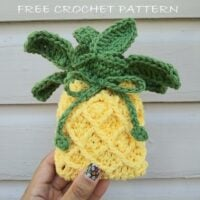 Pineapple Soap Cozy - Link Party 409