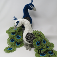 Regal the Peacock